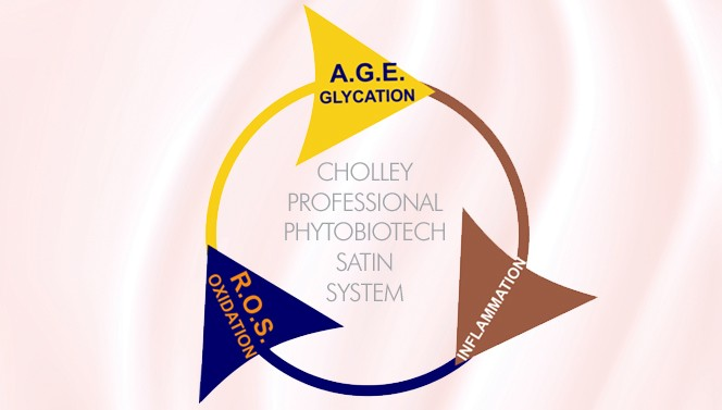 CHOLLEY_ROS_Glycation