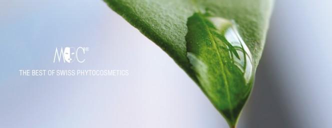 Picture_phytocosmetics